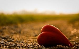 ценность любви,манипуляции в общении,любить трудно