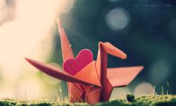 origamiphotographyloveartobjectscolour-0f260ebeac093a6eb3400c147957db9c_h